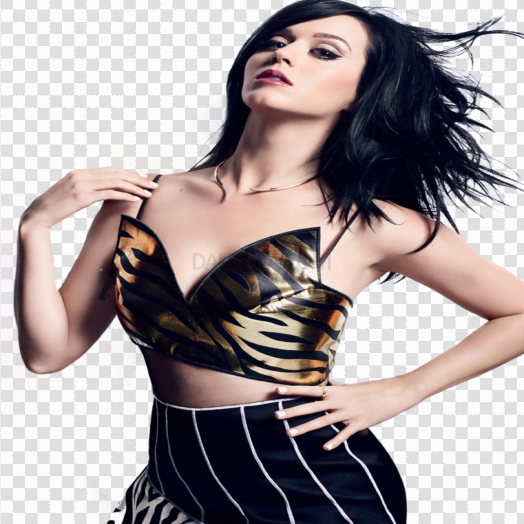 Katy Perry PNG Photos5