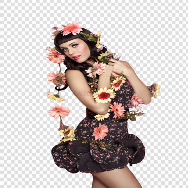 Katy Perry Makeup PNG File